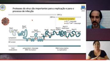 Pesquisadores buscam tratamento para a covid-19 a partir de conhecimentos sobre proteases no cacau